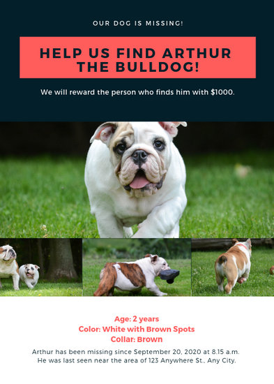 Blue and Red Simple Photo Grid Lost Dog Flyer - Templates by Canva