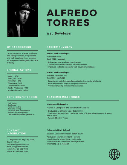 professional business resume templates