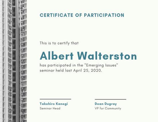 Customize 51+ Participation Certificate templates online - Canva