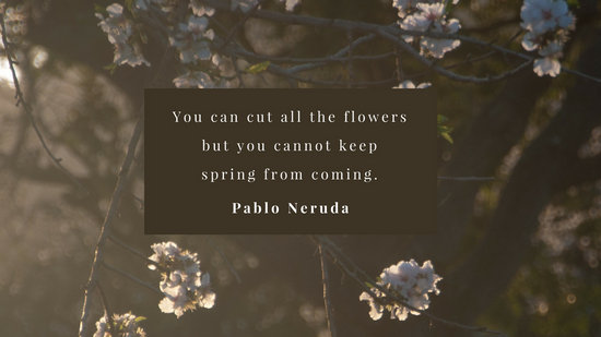 Trendy Quote Wallpapers For Computor Rustic Floral Frame Quote Desktop Wallpaper Templates By