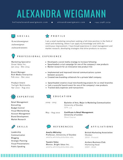 professional company resume example