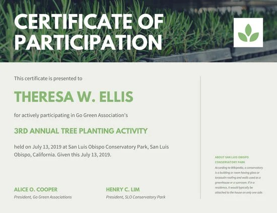 Customize 119+ Participation Certificate templates online - Canva - certificate of participation template
