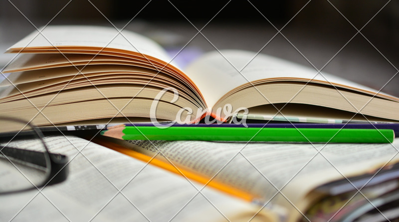 Book, Book Pages, Learn, Study, Bible Study, Open Books - Photos by