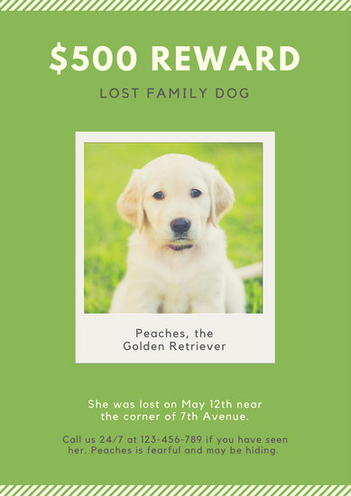 Green Dog Photo Missing Pet Poster - Templates by Canva - missing pet template