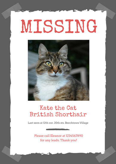Red Photo Pet Missing Poster - Templates by Canva - missing poster template