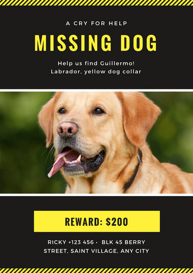 Charcoal and Yellow Missing Pet Poster - Templates by Canva - missing pet template
