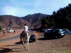 viajes-gratis-concurso-marrakech-low-cost-6
