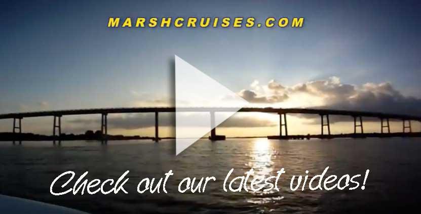 Marsh Cruises U2013 Swansboro Emerald Isle Ncbest Of Tide Chart