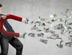 optimisation-fiscale-les-d-put-s-forcent-les-entreprises-d-baller-leurs-chiffres-sur-internet-382781