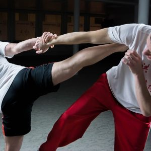 Martial Arts Classes in My Area