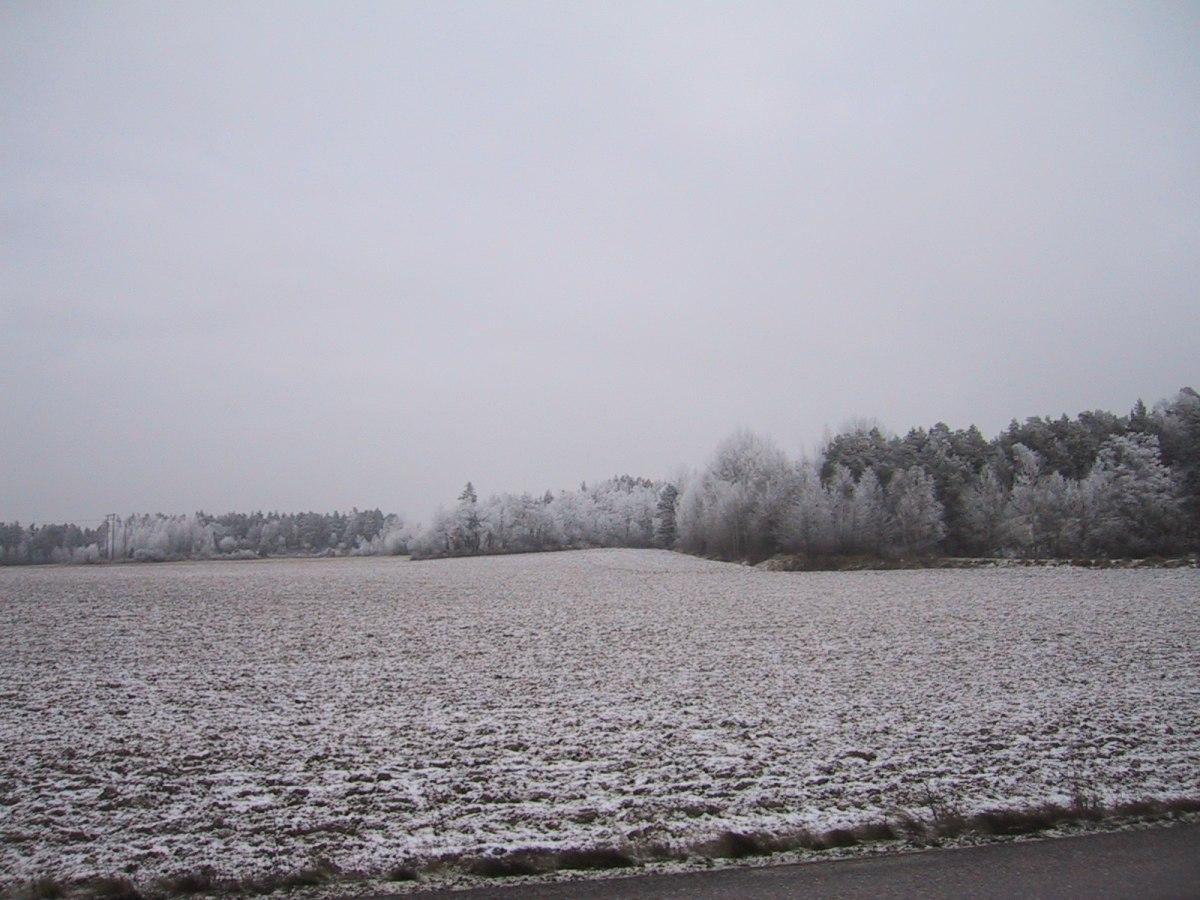 Kyla, snö, regn, snö och mildare