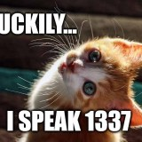 Luckily I speak 1337