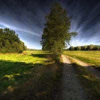Calea dragostei prisositoare