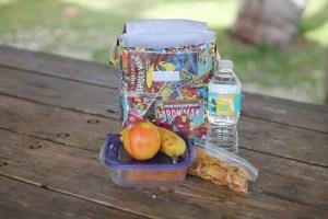 lunchbag food outside