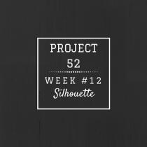 Project52 week12