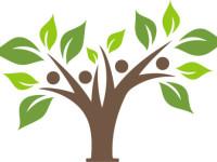tree-e1442004365281-200x150