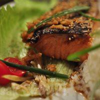 Japanese glazed Salmon