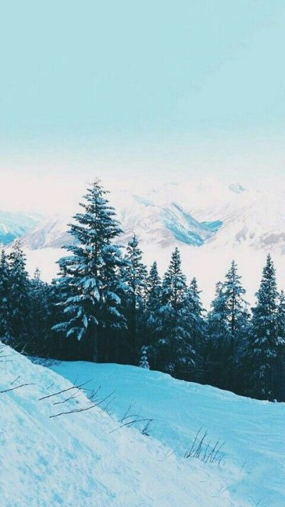 35 Winter iPhone Wallpapers to Spice Up Your Phone ...