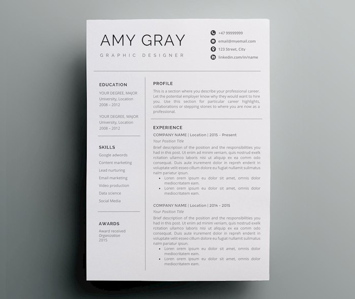25 Best Professional Resume Templates for 2018
