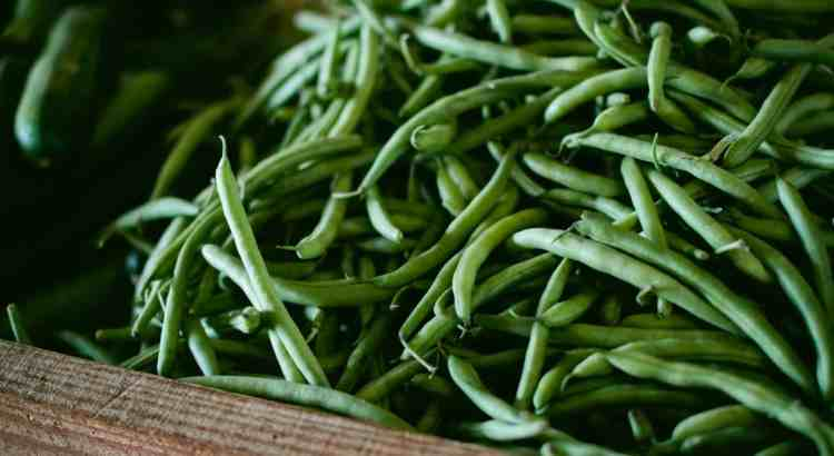 mason woodruff green beans