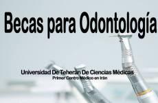 Becas en Odontología