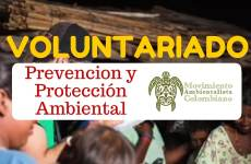 Voluntariado con el Movimiento Ambientalista Colombiano