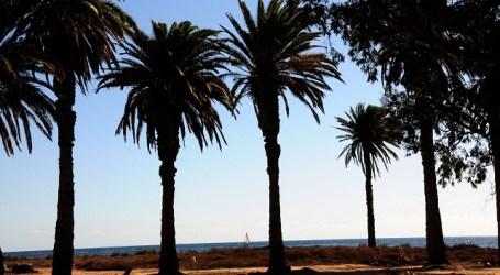 El colegio tirajanero de Santa Águeda inaugura el programa de senderismo escolar