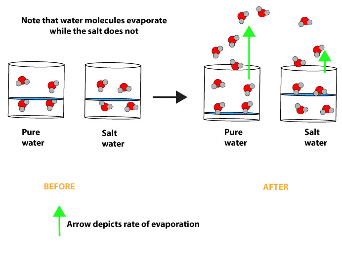 How does the vapor pressure of solution depend on the concentration