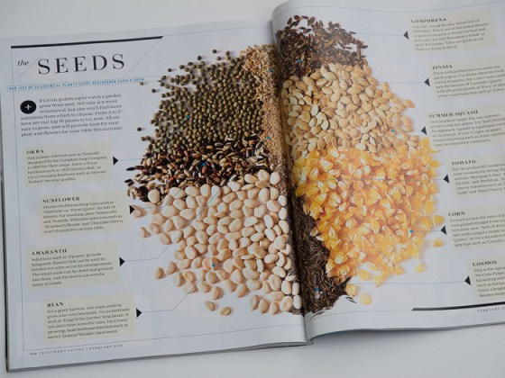 Southern-Living-Seed-Guide