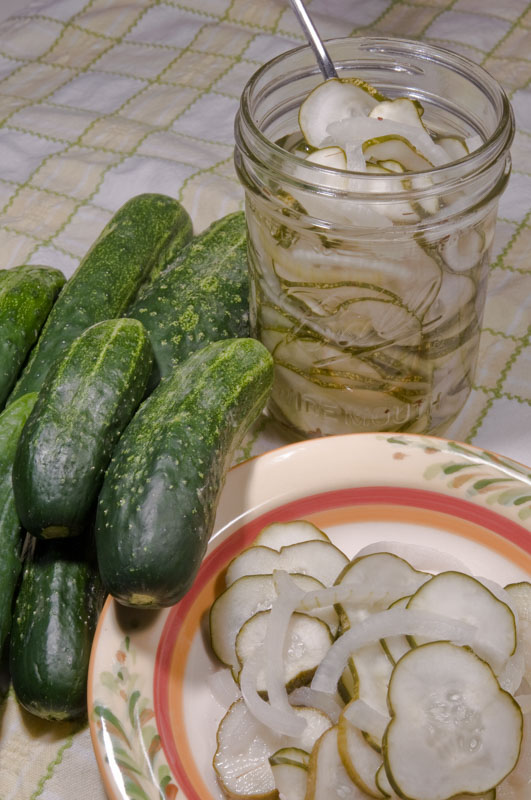 how to make sour pickles from cucumbers