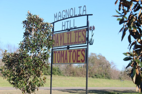 Magnolia-Hill-Farm-Sign