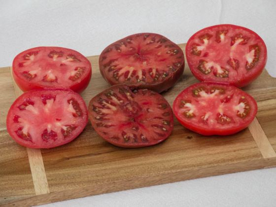 top-tomato-varieties-2015