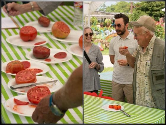 arbor-gate-tomato-tasting