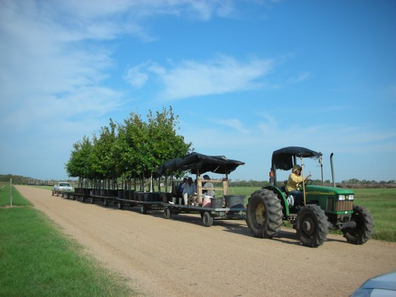 Agricultural workers historically have low wages and very few benefits. tree Town USA is working to change that.