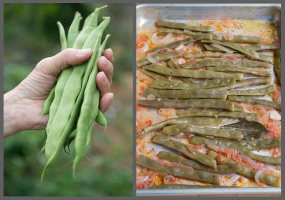 kwintus-flat-beans