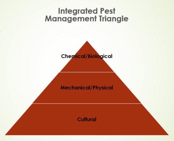 IPM-Triangle