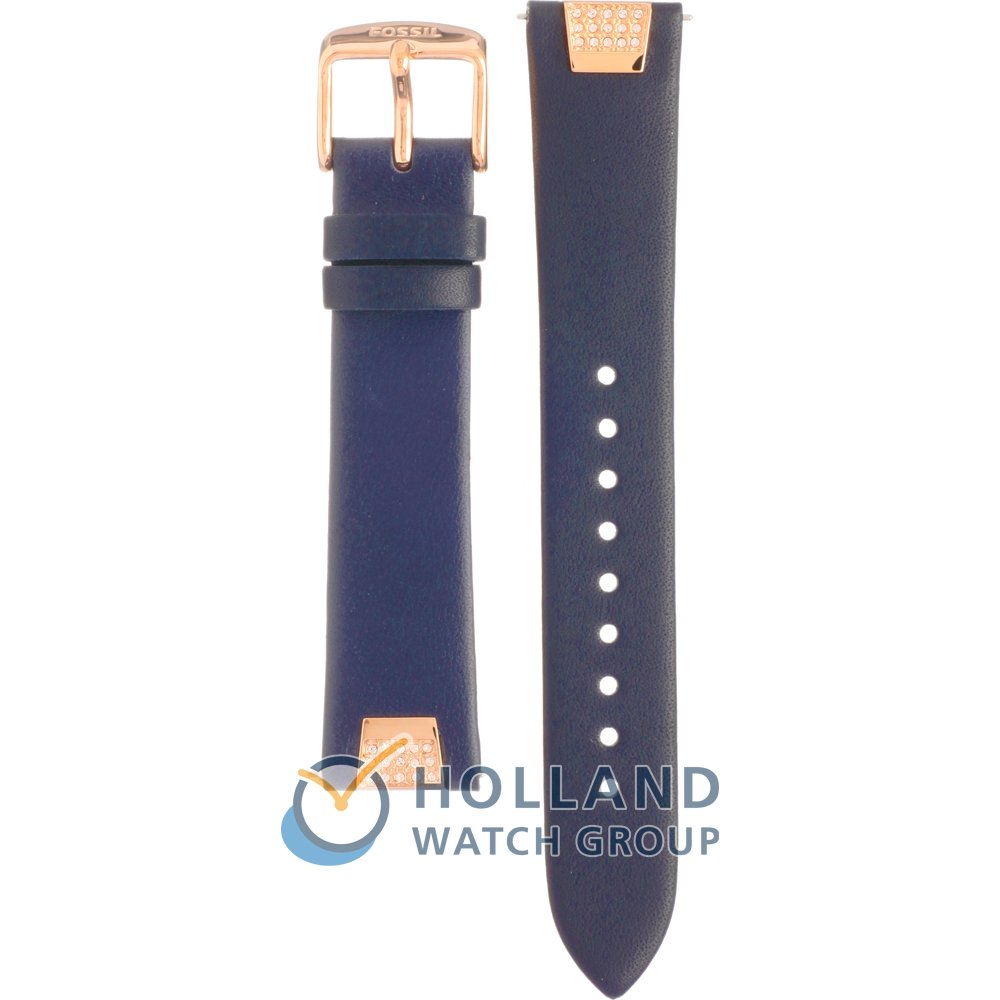 Fossil Riley Fossil Strap Aes3887 Riley