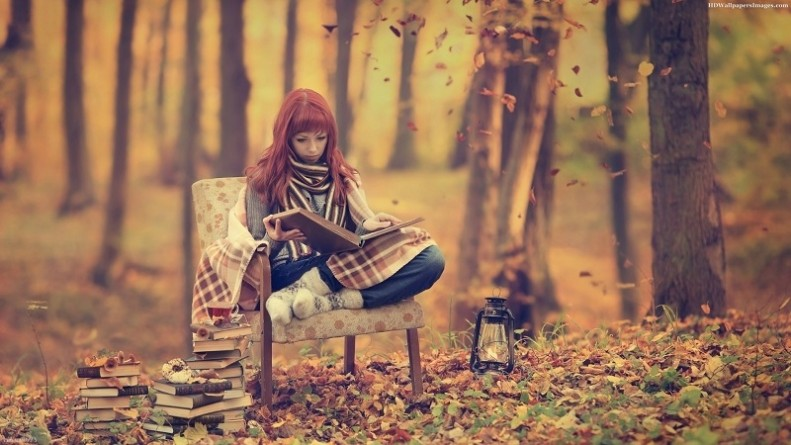 reading-in-the-forest-wallpaper-1