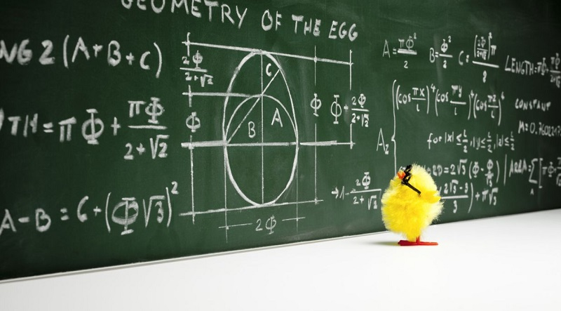 chick-math-56af6ffc3df78cf772c4724a