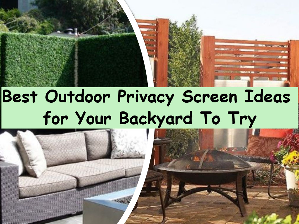 Privacy Screen Ideas For Backyard Best Outdoor Privacy Screen Ideas For Your Backyard To Try