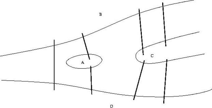 explain network bridge diagram