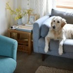 At Home: Scandi-Style Lounge Update with DFS