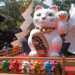 毎日がお祭り騒ぎニャー!インスタグラム 「猫のお祭り」スケジュール