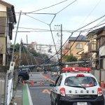 電柱倒れ道路を塞ぎ越谷の駅伝大会が中止!事故の場所や被害の賠償額は?