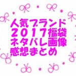 福袋2017の中身ネタバレ感想まとめ【人気ブランド定番・OL向け・ギャル系】