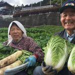 徳島県三好の民宿『うり坊』は田舎体験が楽しめる民宿!人生の楽園