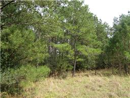 Property for sale at 28742 Pleasant Forest, Magnolia,  Texas 77355