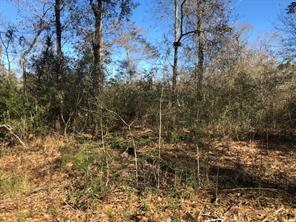 Property for sale at 66 Acres Brenda, Magnolia,  Texas 77355