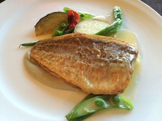 グランドビューの魚