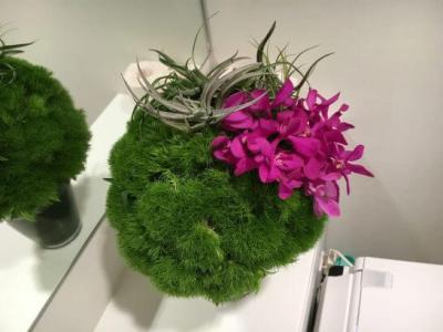 ダイナースクラブ 銀座ラウンジのトイレの装花(2016年6月)